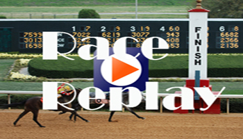 Bayang Karerista | Philippines Horse Racing Blog on Feedspot
