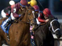 Philippine Race Horses